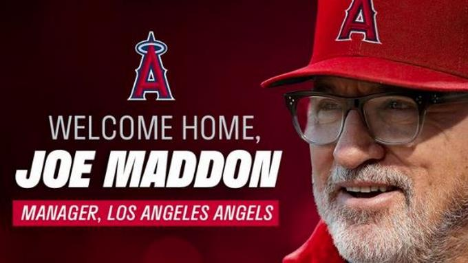 Joe Maddon regresa a los Angelinos