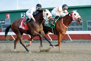Wells To Win gana en el V Centenario