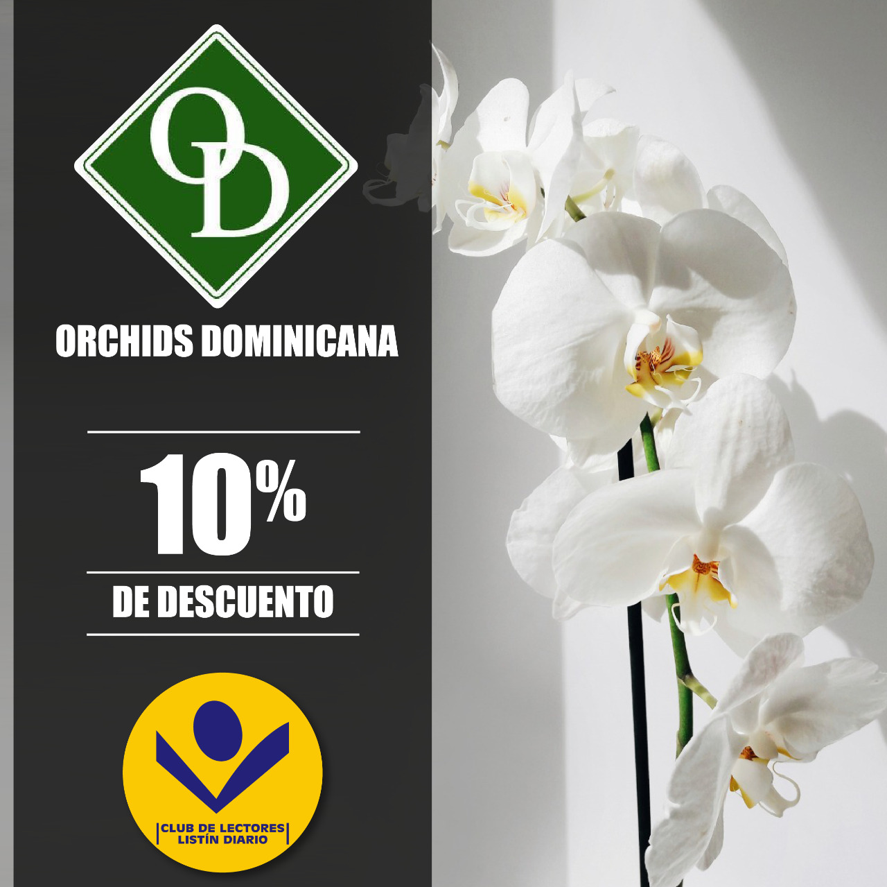 Orchids Dominicana